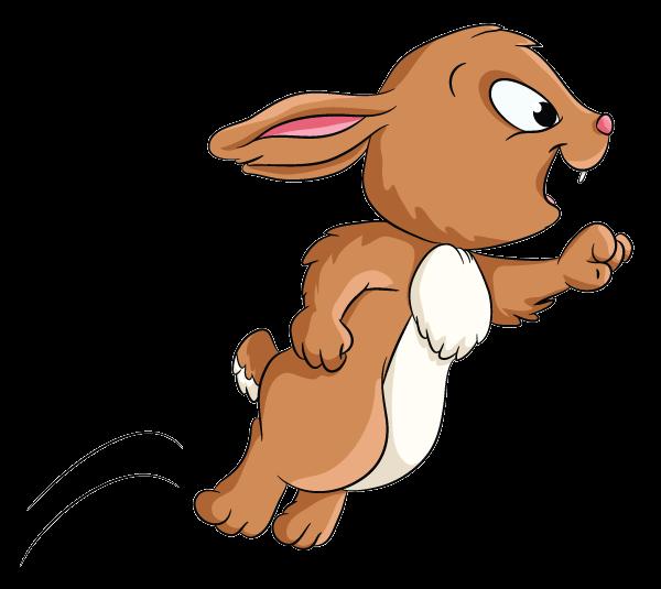 Image of bouncing rabbit