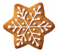 image of Christmas cookie