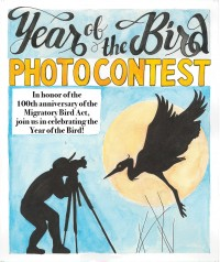 Year of the Bird Photo Contest Poster