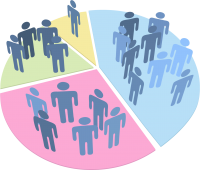 Image of demographic pie chart