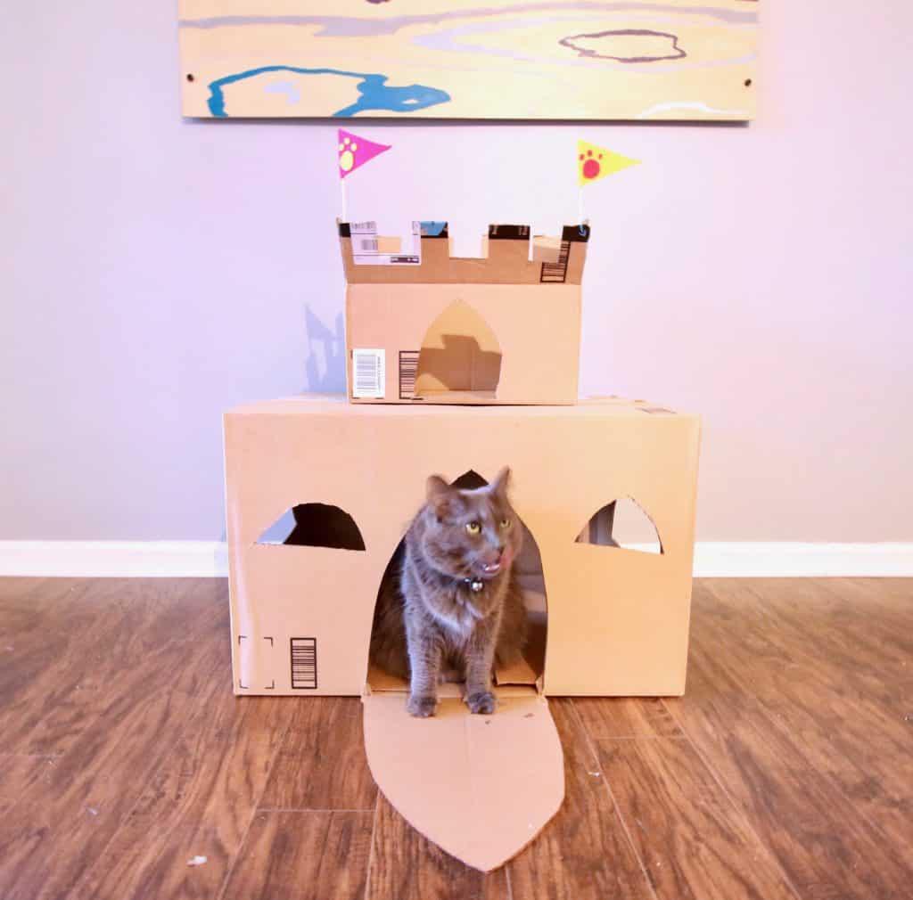 image of cat in cardboard castle