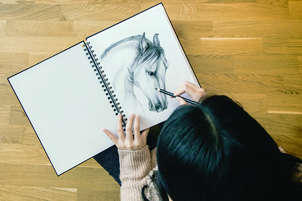 image of woman drawing a horse