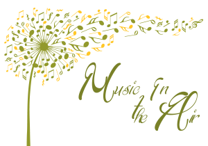 Image Music in the Air program