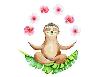 image of sloth doing yoga
