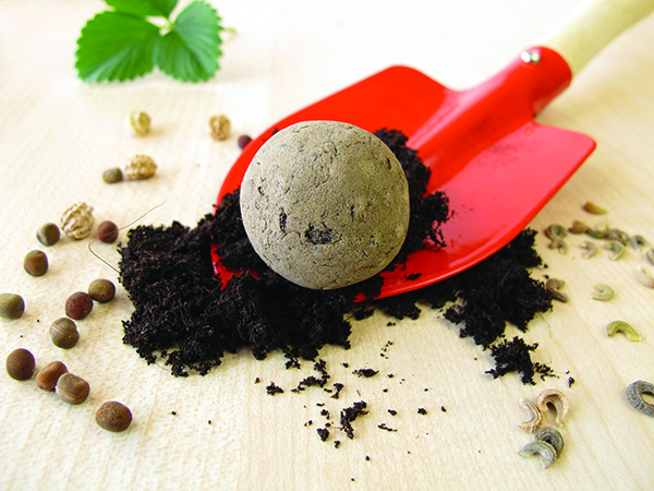 image of seed bomb and trowel